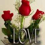 """""""""""Love"""" is a four letter word"""" by DavidHensenPhotography"""