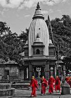 Buddhist Monks at Pashupatinath Temple