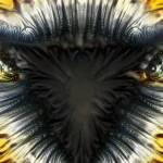 """Eagle"" by DanaHaynes"