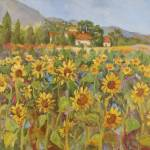 """Provence Sunflower Field"" by BarbaraRedingStudios"