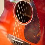 """""""Guitar"""" by freyfoto"""