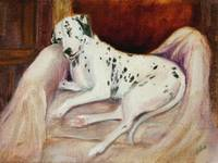 Sleeping Soul Dalmatian Dog