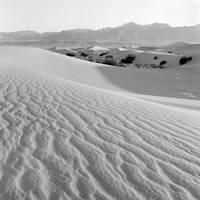 Mesquite Dunes #1 Death Valley CA