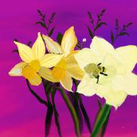 Daffodils From My Sister Art Prints & Posters by Wilma Tyler