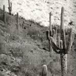 """Dry & Weary Land"" by bluejawa"