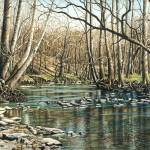 """Spring on Leatherwood Creek"" by powellfineart"