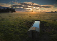 Water Trough Sunrise