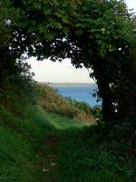 Seaton to Looes Coastal Path, 'Struddicks'.