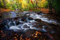 Fall on Fountain Creek