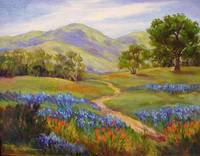 Carmel Valley Spring