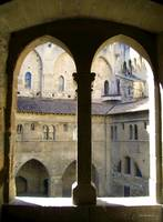 Palais des Papes View