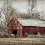 """Winter On the Farm"" by GlendaBorchelt"