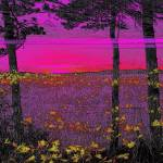 """Purple Sunset"" by RobertBurns"