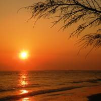 A Golden Sunrise at Folly Art Prints & Posters by Christina Leeper