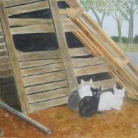 Barn Cats Art Prints & Posters by Liz Field