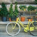 """""""Italian Transportation"""" by purpleflower"""
