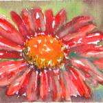 """Red Gerber Daisy Watercolor II"" by nataliecardon"