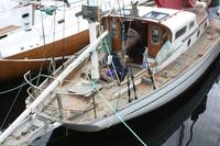 Wooden Boat Show 2921