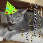 """Birthday Party Animal Russian Blue cat"" by crazyabouthercats"