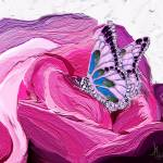 """Butterfly on rose painting"" by night"
