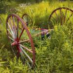 """Wagon Wheel"" by peduzie"