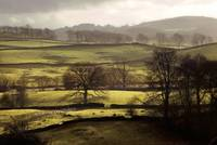 Lake District fields