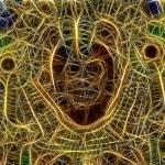 The Maya spirit