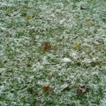 """""""Frost"""" by GuardianAngel68"""