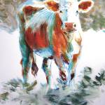 """The Courage of Youth - Acrylic Cow Painting"" by MikeJory"