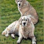 """Gina & Boomer"" by ArtsandDogs"