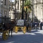 """buggies near Catedral de Santa María, Seville"" by sphraner"