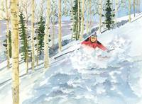 Downhill Skiing in Steamboat Springs Colorado
