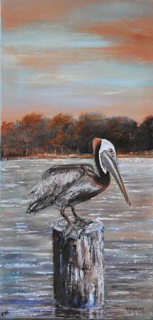 BROWN PELICAN  LOUISIANA WILDLIFE PAINTING