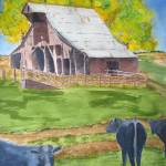 """Rural America Old Missouri Barn and black angus co"" by vickeysart"