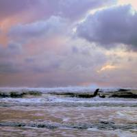 Ocean Shores Stormwatch Art Prints & Posters by Kurt Clark