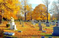 Autumn of our Lives