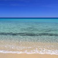 Horizon over idyllic beach with clear blue water