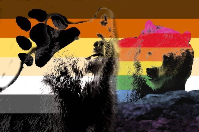 dublin tv gay