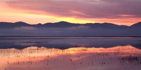 Cerknica lake at dawn