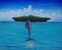 Lone Dolphin