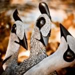 """Guineafowl Family"" by singularscenes"