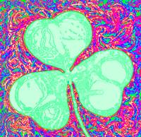 shamrockpaisley