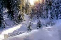 Russian taiga in winter
