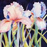"""Two Irises"" by lindahaile"