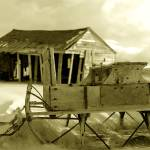"""Bowdie Sleigh Sepia"" by dmapix"