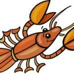 """crayfish"" by cartoonfactory"