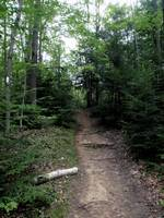 Trail - Mono Cliffs