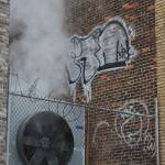 """Steamy"" by CKDamrosch"