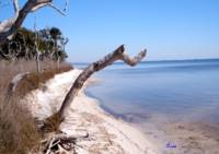 Pensacola National Wildlife Refuge