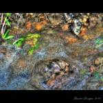 """moving water HDR"" by BaxterDesigns"